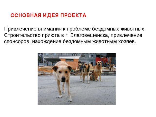 Привлечение внимания к проблеме бездомных животных. Строительство приюта в г...