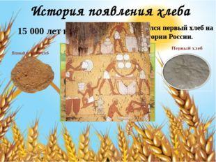 История появления хлеба 15 000 лет назад Появился первый хлеб на территории Р