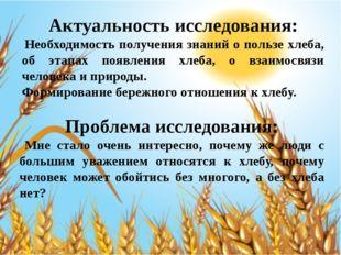 Актуальность исследования: Необходимость получения знаний о пользе хлеба, об