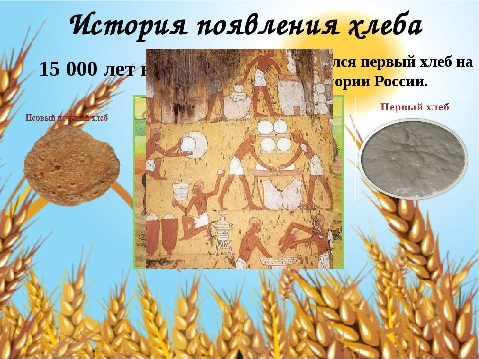 История появления хлеба 15 000 лет назад Появился первый хлеб на территории Р...