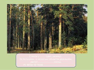 Стволы у ........ (цвет, размер). За большими, в несколько обхватов деревьями