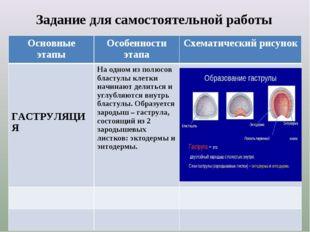 Задание для самостоятельной работы Основные этапыОсобенности этапаСхематиче