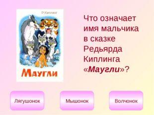 Что означает имя мальчика в сказке Редьярда Киплинга «Маугли»? Лягушонок Мышо