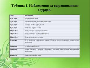Таблица 1. Наблюдения за выращиванием огурцов. Дата Наблюдения 1 декабря Прор