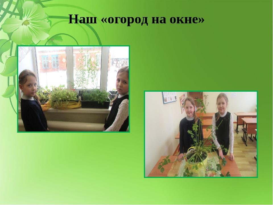 Наш «огород на окне»
