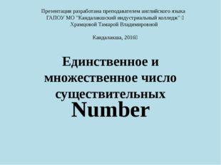 Единственное и множественное число существительных Number Презентацияразрабо