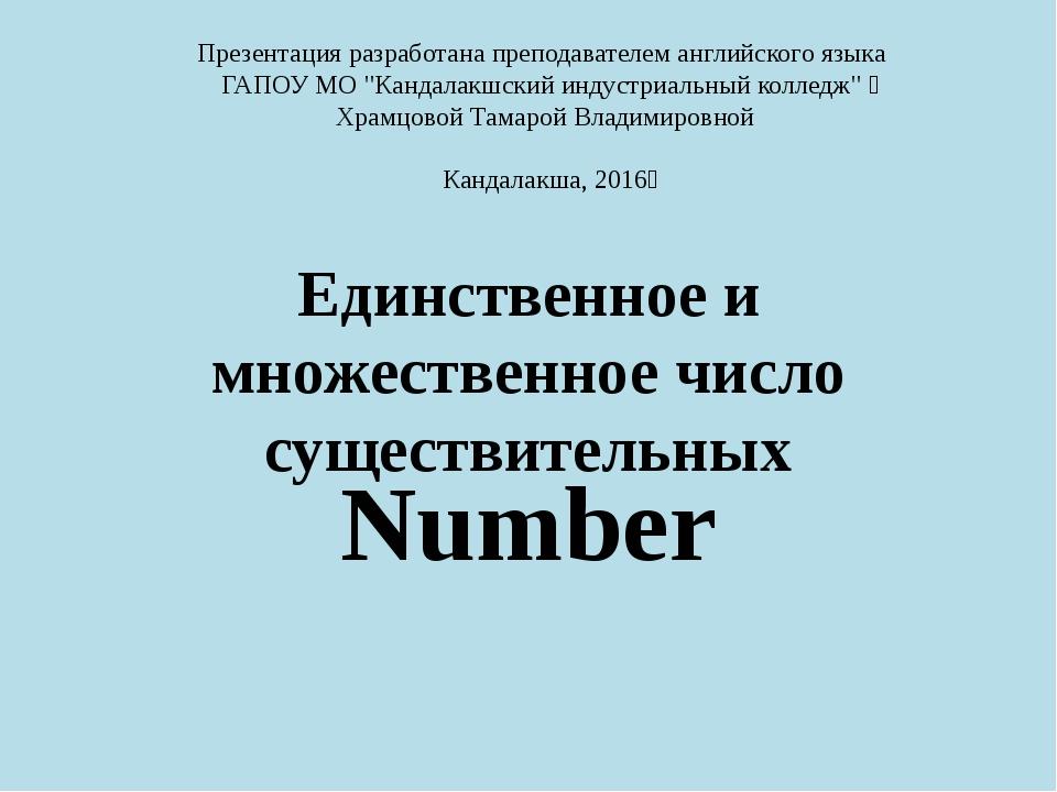 Единственное и множественное число существительных Number Презентацияразрабо...