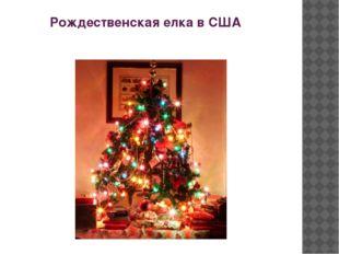Рождественская елка в США