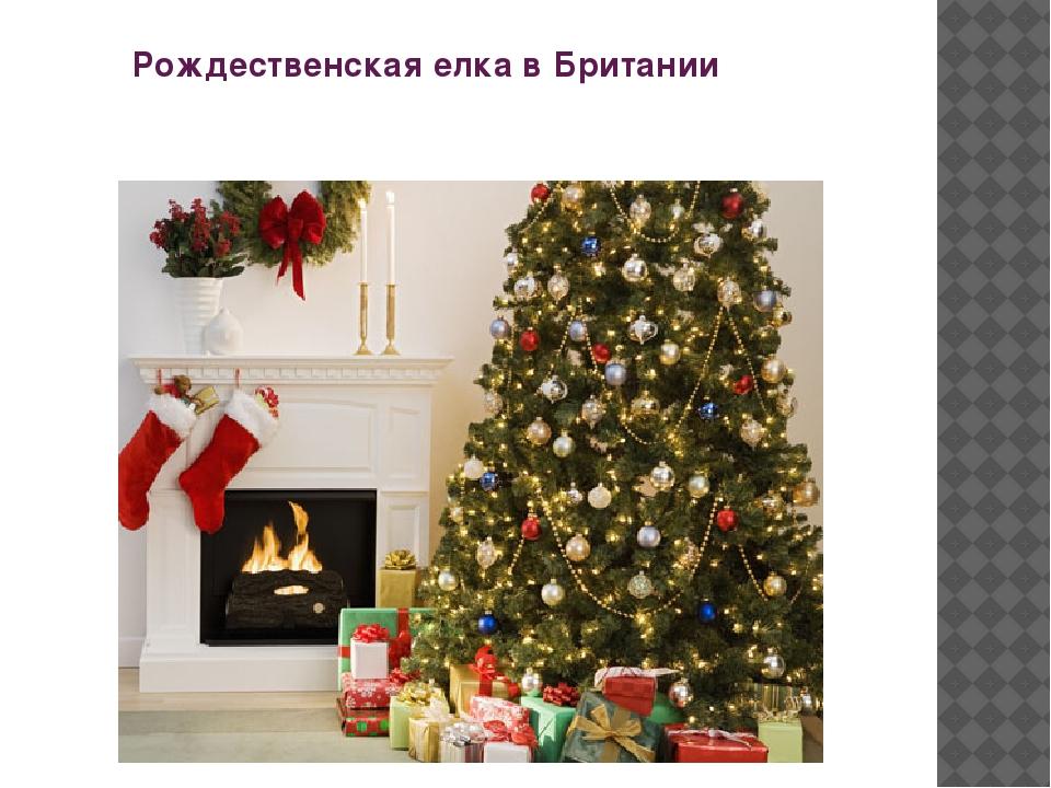 Рождественская елка в Британии