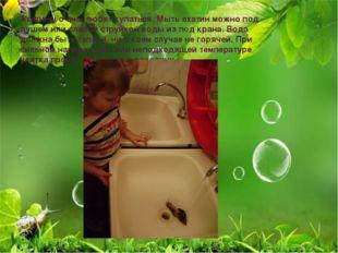 Ахатины очень любят купаться. Мыть ахатин можно под душем или слабой струйкой
