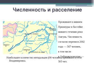 Численность и расселение Проживают в нижнем Приамурье в бассейне нижнего тече