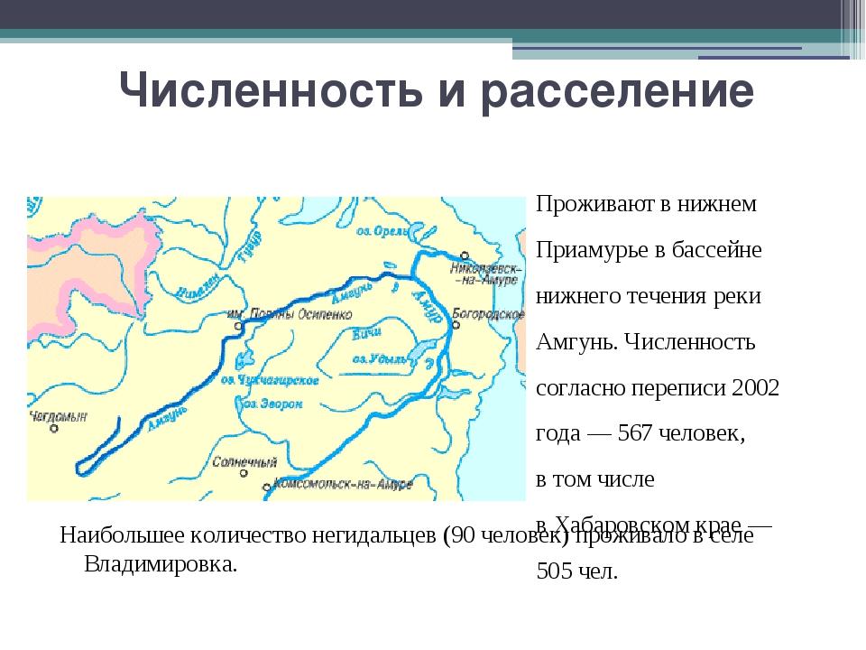 Численность и расселение Проживают в нижнем Приамурье в бассейне нижнего тече...