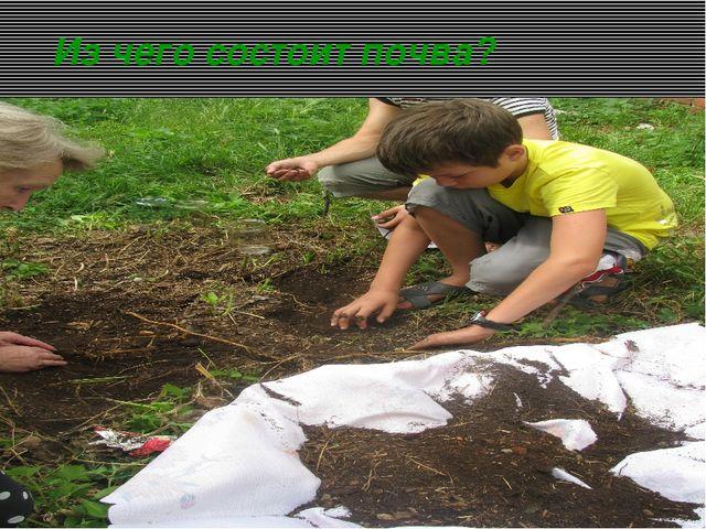 Из чего состоит почва?