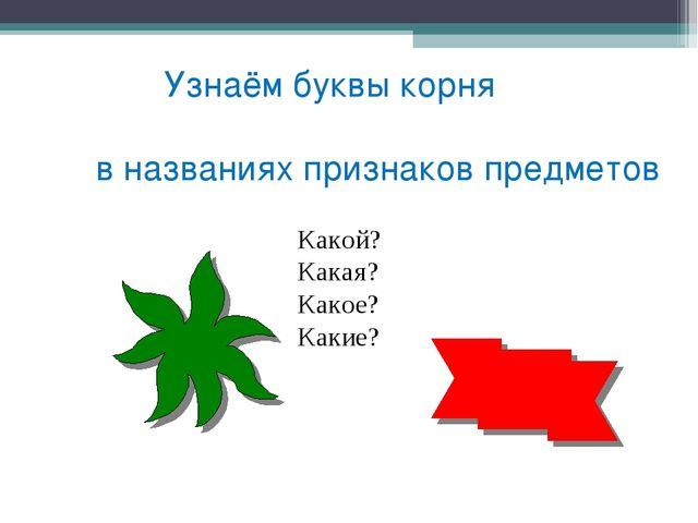 Узнаём буквы корня в названиях признаков предметов Какой? Какая? Какое? Какие?
