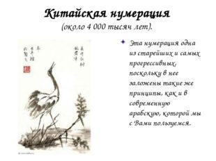 Китайская нумерация (около 4 000 тысяч лет). Эта нумерация одна из старейших