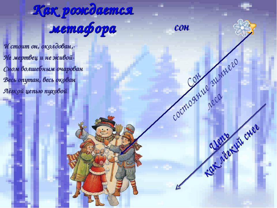 Как рождается метафора сон Сон состояние зимнего леса Цепь как лёгкий снег И...