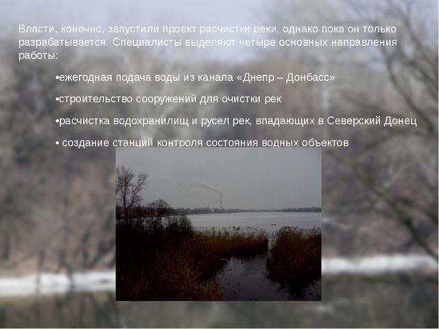 Власти, конечно, запустили проект расчистки реки, однако пока он только разра...