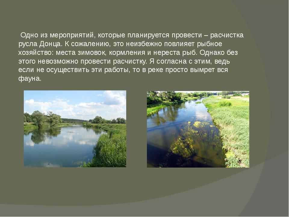 Одно из мероприятий, которые планируется провести – расчистка русла Донца. К...