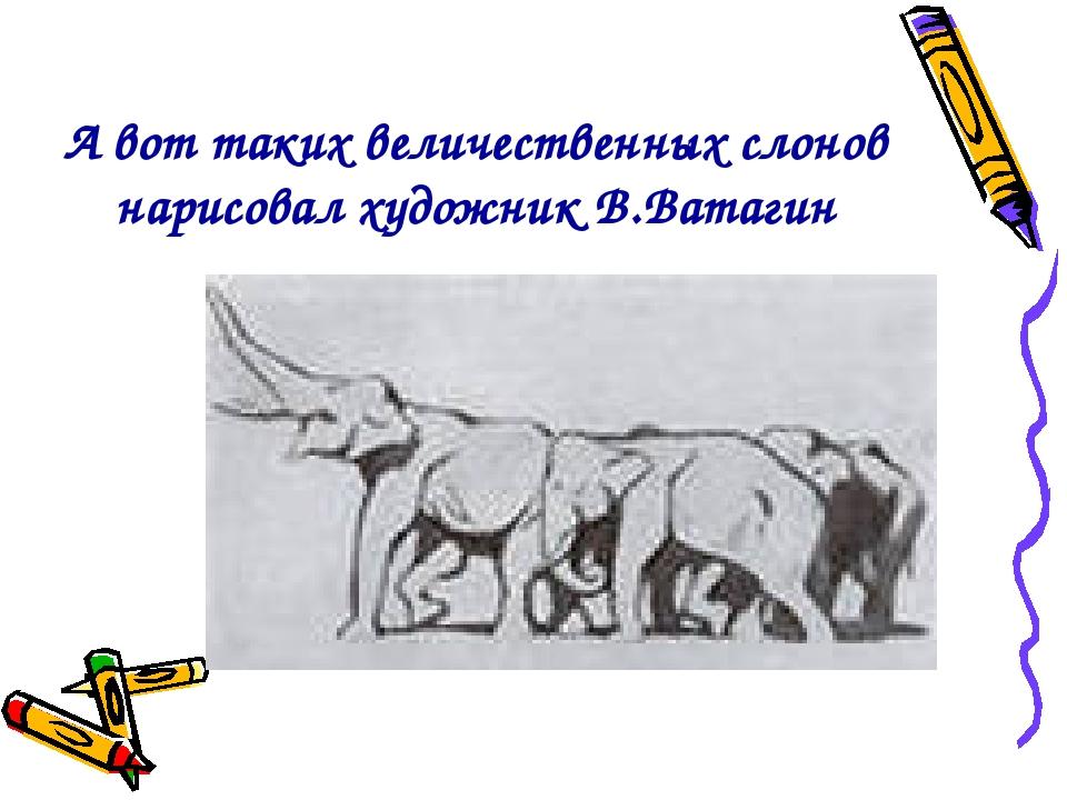 А вот таких величественных слонов нарисовал художник В.Ватагин