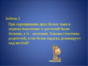 Задача 3 При скрещивании двух белых тыкв в первом поколении ¾ растений были б