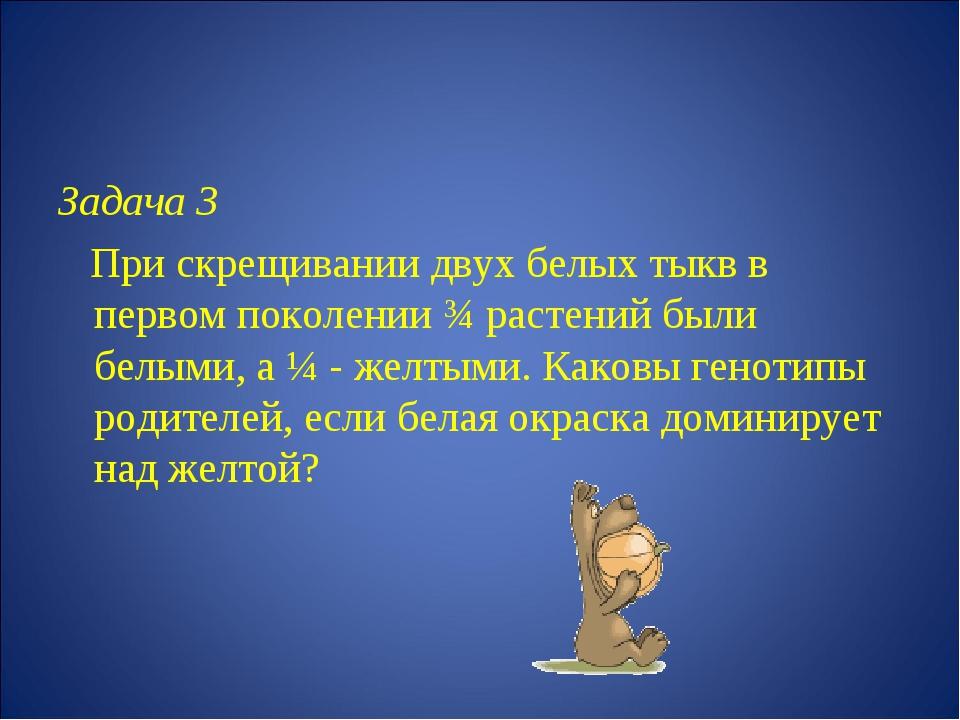 Задача 3 При скрещивании двух белых тыкв в первом поколении ¾ растений были б...