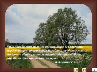 Язык народа есть цельное органическое его создание, вырастающее во всех своих