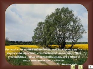 Русский язык чрезвычайно богат, гибок, живописен для выражения простых, естес