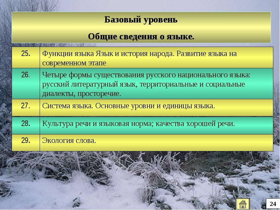 Базовый уровень Общие сведения о языке. 24