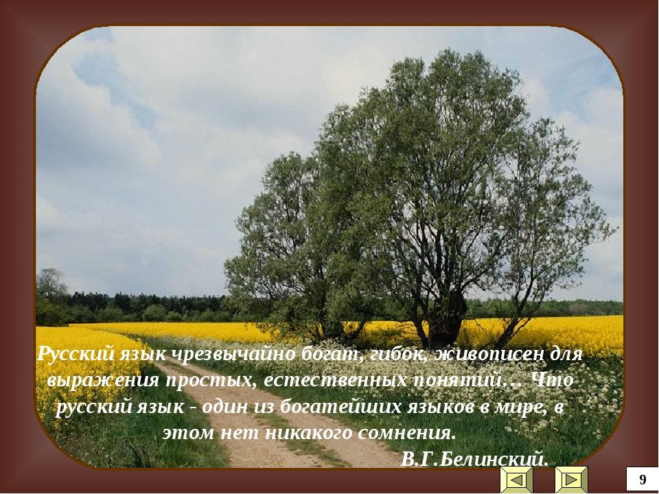Русский язык чрезвычайно богат, гибок, живописен для выражения простых, естес...