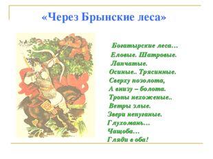 «Через Брынские леса» Богатырские леса… Еловые. Шатровые. Лапчатые. Осиные..