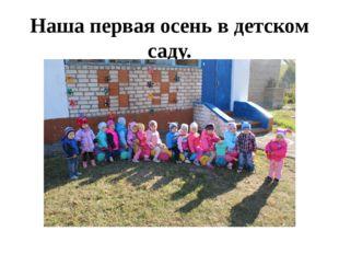 Наша первая осень в детском саду.