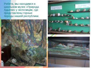 Ребята, мы находимся в школьном музее «Природа Адыгеи» у экспозиции, где пре