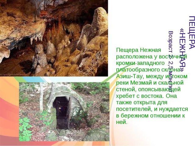 ПЕЩЕРА «НЕЖНАЯ» Возраст 2- 2,5 млн.лет Пещера Нежная расположена у восточной...