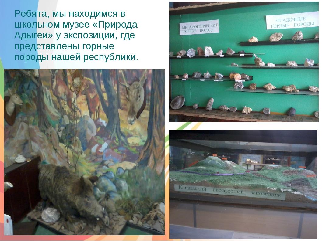 Ребята, мы находимся в школьном музее «Природа Адыгеи» у экспозиции, где пре...