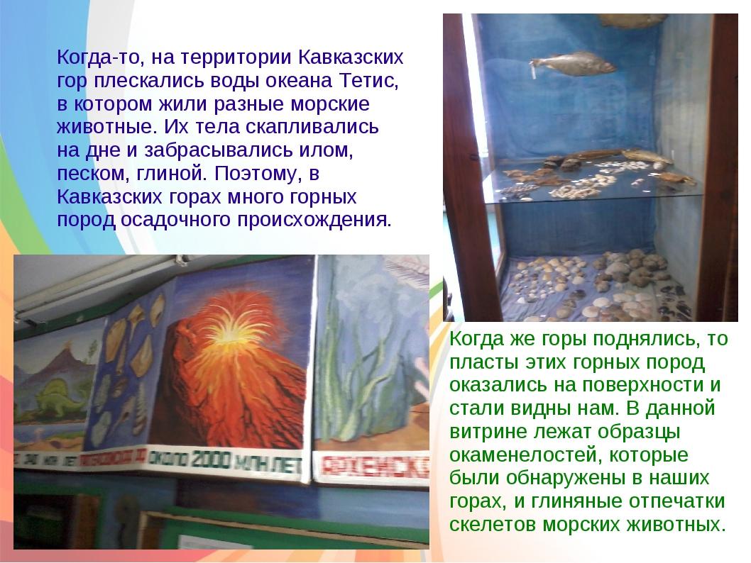 Когда-то, на территории Кавказских гор плескались воды океана Тетис, в котор...