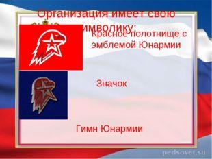 Организация имеет свою символику: Красное полотнище с эмблемой Юнармии Значок
