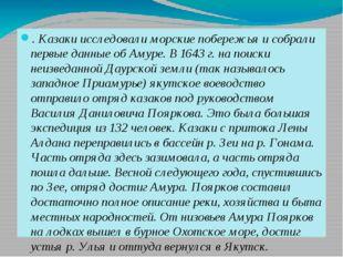 . Казаки исследовали морские побережья и собрали первые данные об Амуре. В 1