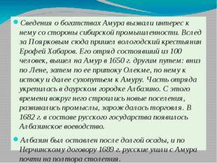 Сведения о богатствах Амура вызвали интерес к нему со стороны сибирской пром