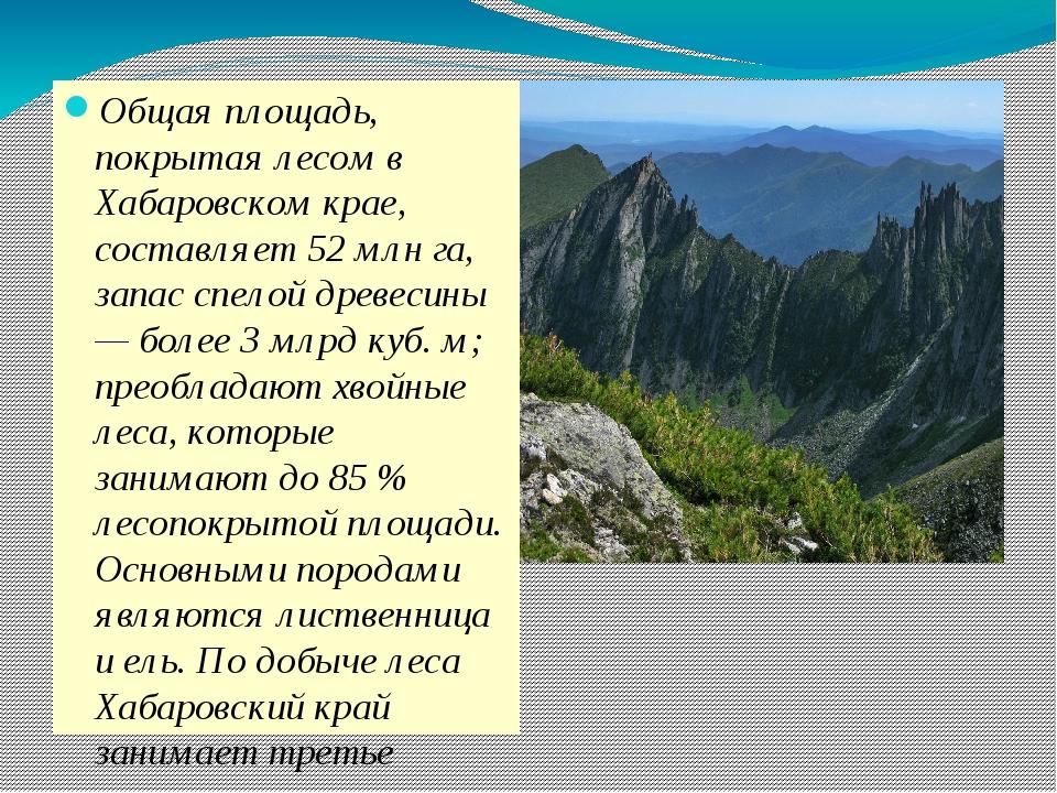 Общая площадь, покрытая лесом в Хабаровском крае, составляет 52 млн га, запа...