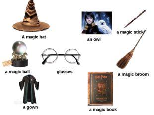 A magic hat a magic stick a magic broom a magic book a gown an owl glasses a