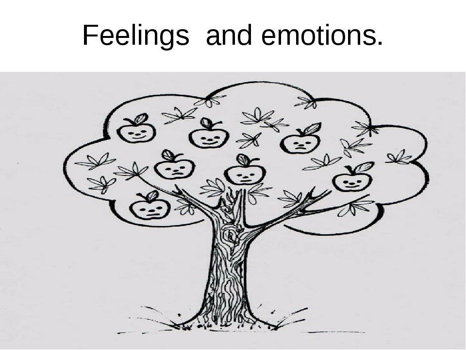 Feelings and emotions.