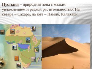 Пустыня – природная зона с малым увлажнением и редкой растительностью. На сев
