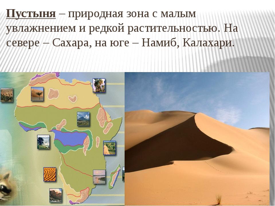 Пустыня – природная зона с малым увлажнением и редкой растительностью. На сев...