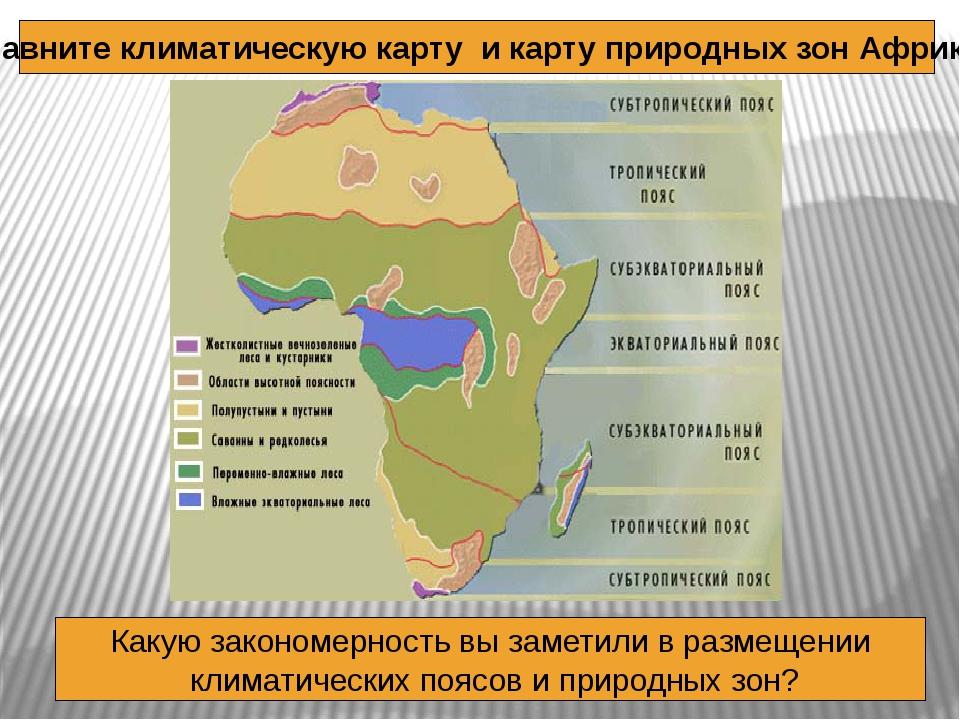 Сравните климатическую карту и карту природных зон Африки Какую закономерност...