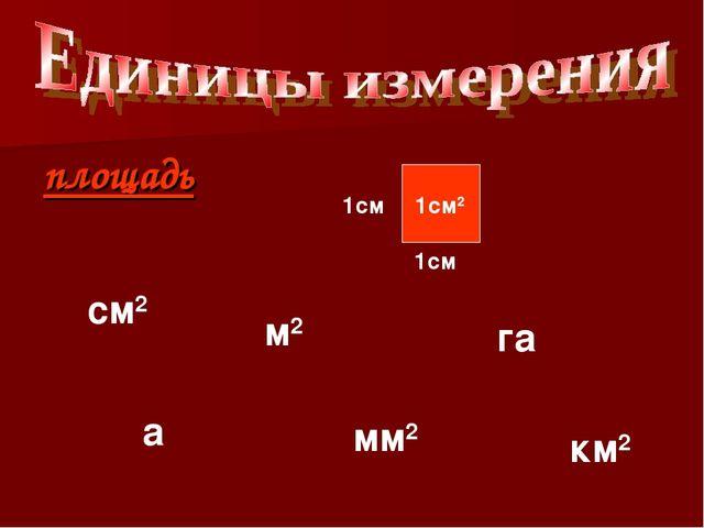 площадь 1см 1см 1см2 см2 мм2 м2 а га км2