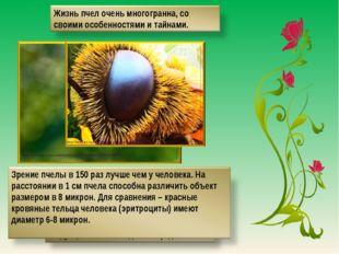 http://www.itar-tass.com/data/Newses/MainPhoto/255520.JPEG http://newfact.ru/