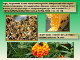 http://medinfo.ua/news/00014e19108d4d90665c349b95ad4aa6/displayarticle http:/