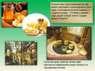 Летом при музее работает летнее кафе, оригинально оформленное в виде пчелины