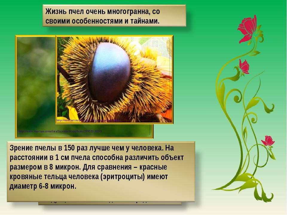 http://www.itar-tass.com/data/Newses/MainPhoto/255520.JPEG http://newfact.ru/...