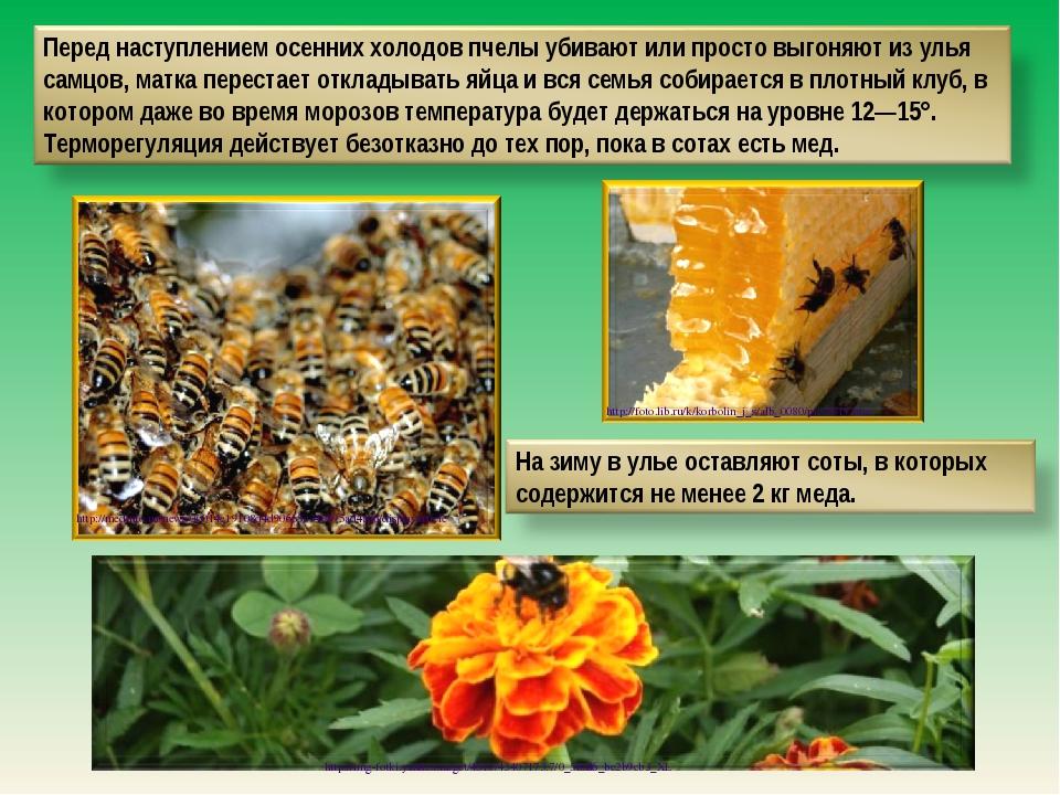 http://medinfo.ua/news/00014e19108d4d90665c349b95ad4aa6/displayarticle http:/...
